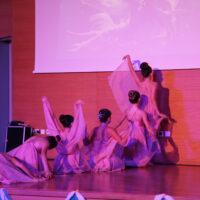 xmass dance 2018 xalkida (93)